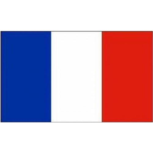 mil-tec-bandiera-francia