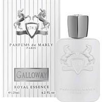 parfums-de-marly-galloway-edp-125-ml-vapo_image_1