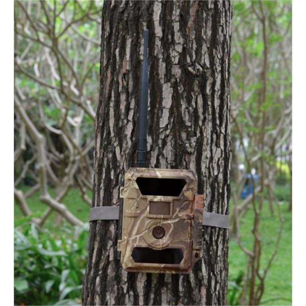 trail-camera-copy-of-fototrappola-trail-camera-3g-hd-1080p_medium_image_4